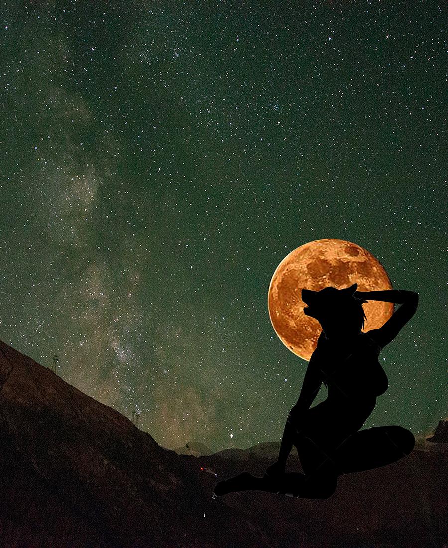 Wolf Moon Web